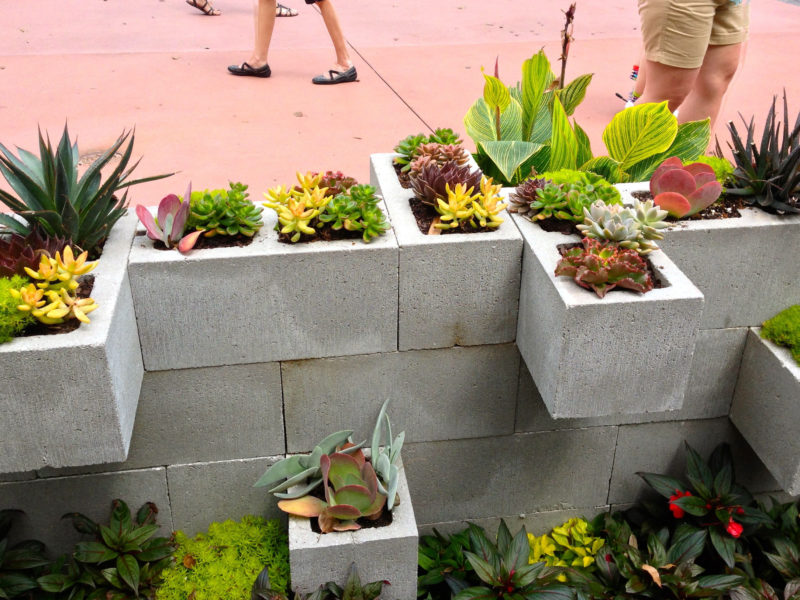 wall planters outdoor unique New cool idea for a planter wall Epcot s flower and garden festival